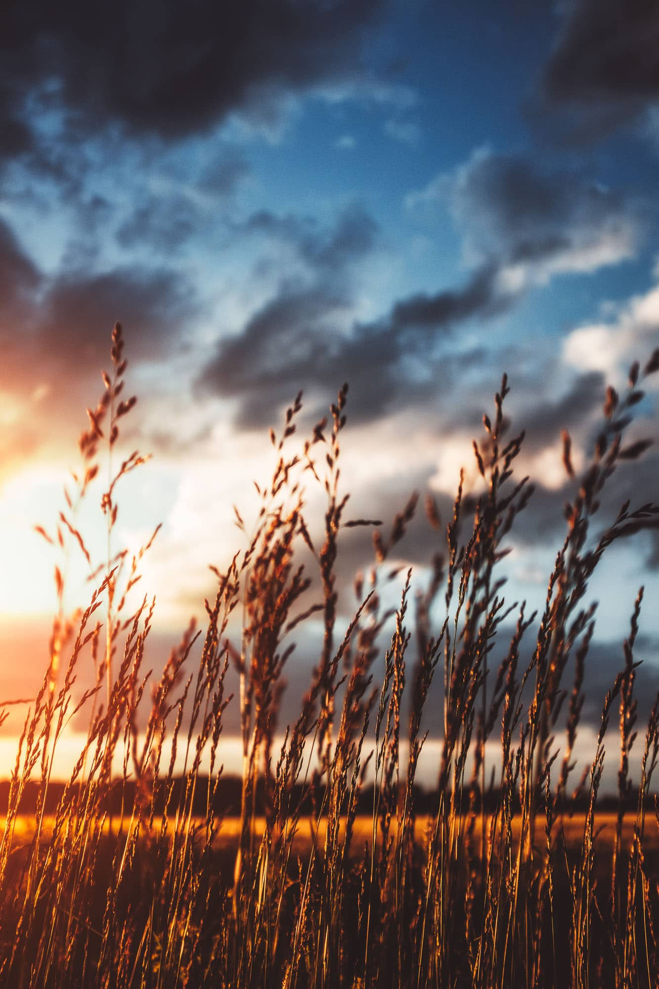 6 months with the X100F | The Portfolio of Bryan Minear